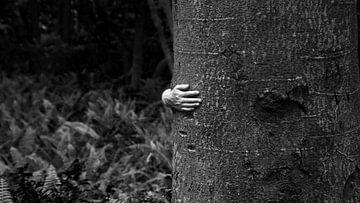 An einen Baum kuscheln von nahua photo