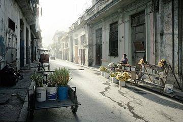 Havana, Cuba bij dageraad. Typische woonstraat in het Centrum met geparkeerde auto's en heel weinig  van Tjeerd Kruse