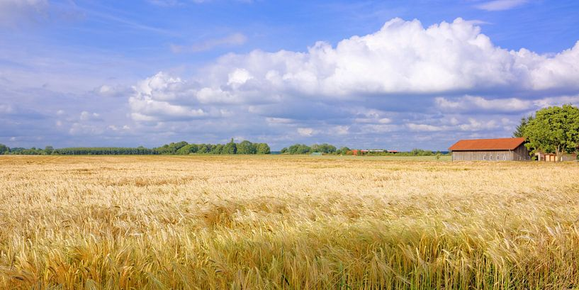 Breed land - Panorama van Gisela Scheffbuch