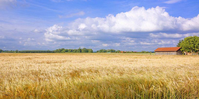 Wide Open - Panorama van Gisela Scheffbuch
