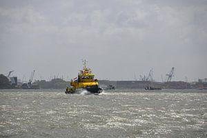 Loodsboot op de Nieuwe Waterweg van FotoGraaG Hanneke