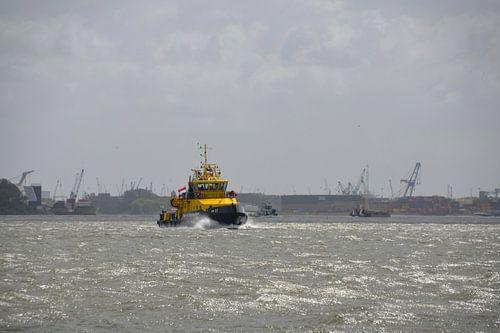 Loodsboot op de Nieuwe Waterweg