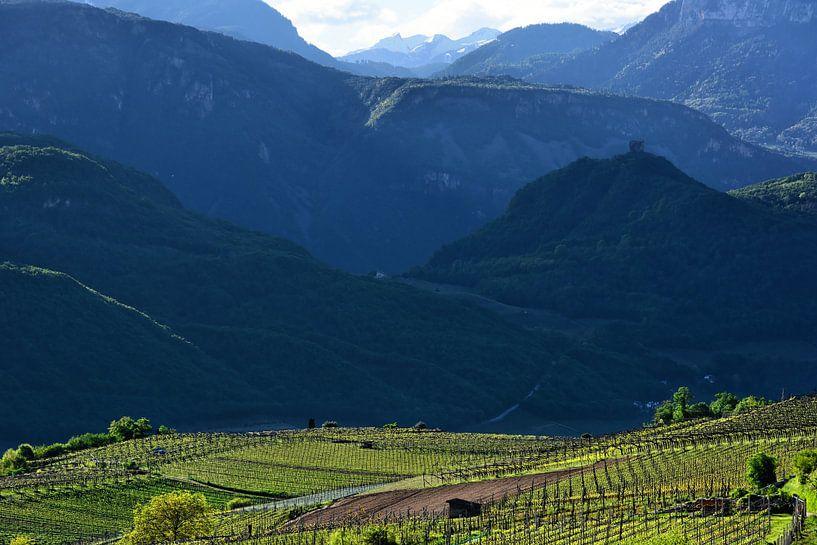A Spring Morning in South Tyrol van Gisela Scheffbuch