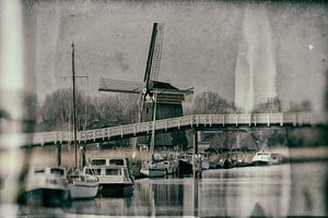 Special Alkmaar