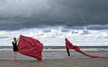 Rot von Hans Vink