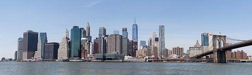 Skyline New York City van