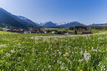 Rubi, Oberallgäu von Walter G. Allgöwer