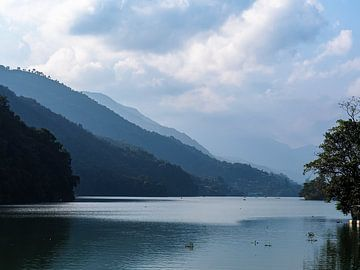 Der tropische Bergsee von Pokhara von Rik Pijnenburg