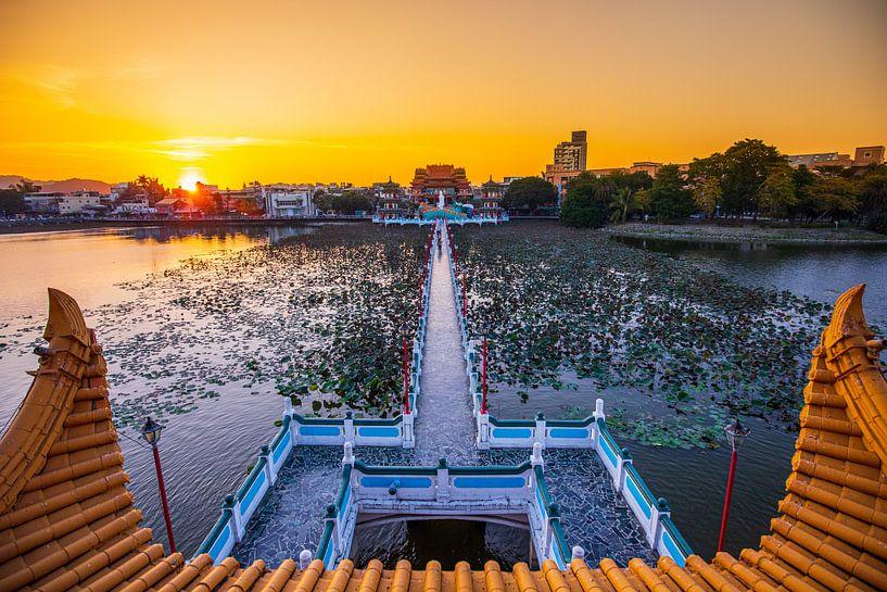 Lotus-Teich (Kaohsiung) von Michel van Rossum
