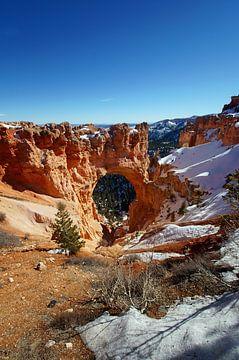 Natural Bridge Bryce Canyon, Utah, Vereinigte Staaten von Discover Dutch Nature