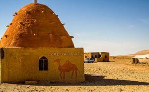 Op weg naar Palmyra
