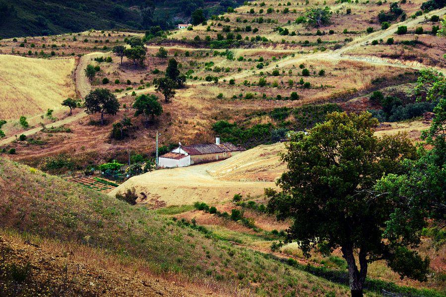 Landschap Zuid Portugal van Harrie Muis