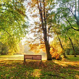 Eenzaam bankje in goudkleurig herfstpark van Daniël van Leeuwen