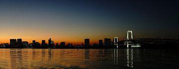 Tokio zonsondergang van Stefan Havadi-Nagy