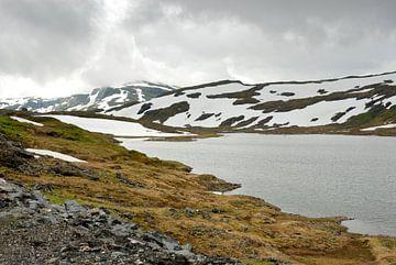 Bergen in Noorwegen van Margreet Frowijn