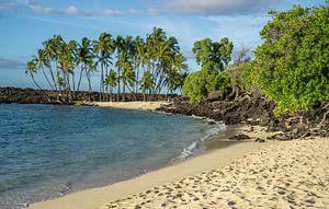 Paradijselijk strand op Hawaii van Reis Genie
