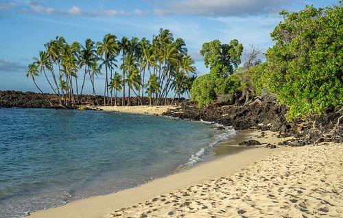 Paradijselijk strand op Hawaii