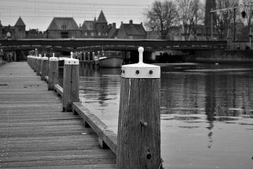 Poller am Wasser von Maud De Vries