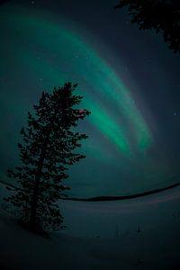 Noorderlicht in Finland van