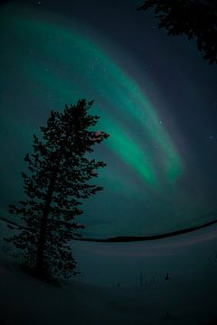 Noorderlicht in Finland von