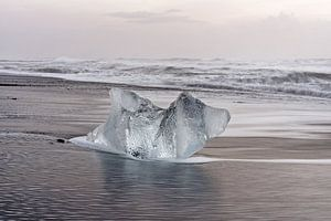 Ice block on the black beach in Iceland