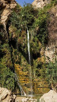Ein Gedi-Wasserfall in Israel von Jessica Lokker