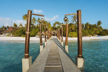 Tropische Insel von Michiel Dros