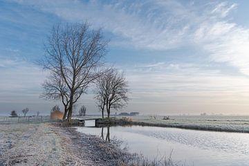 Winterszene mit Brücke und Bäumen von Beeldbank Alblasserwaard