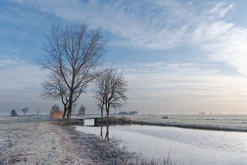 Winter in de Alblasserwaard:  vliet met bruggetje en bomenpartij