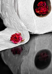 Toilettenpapier mit Rosen