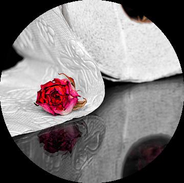 Toiletpapier met rozen van Elke Holinski