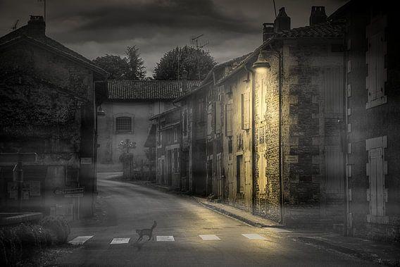 De dorpskat