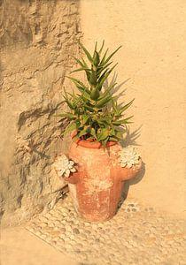 italian vase van