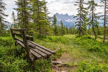 """Waldlandschaft """"Rastbank mit Aussicht"""" von Coen Weesjes"""