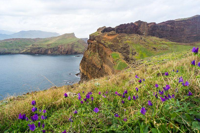 Ponta de São Lourenço, Madeira, van Michel van Kooten