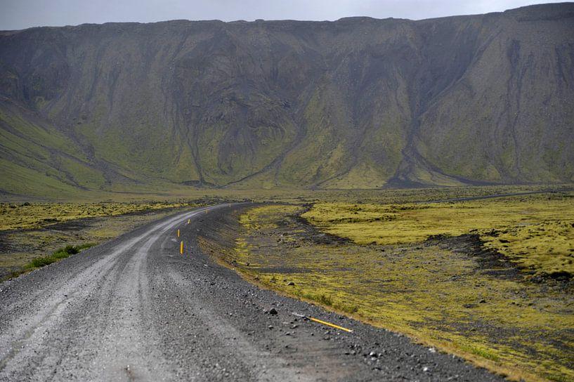 A road less taken van Beeldig Moment