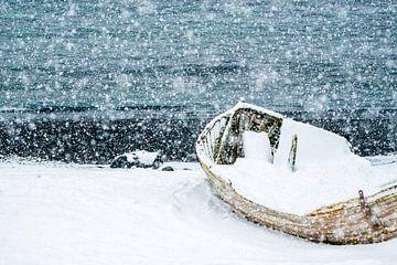 Scheepswrak op Antarctica in de sneeuw. van Ron van der Stappen