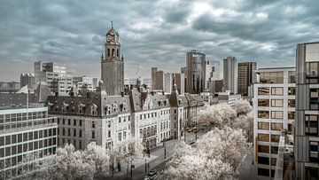 Rathaus Rotterdam von Ad Van Koppen