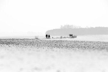 Schneewanderer von Guy Lambrechts