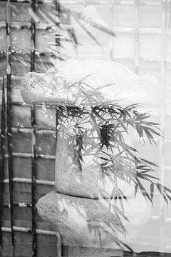 Japanische Laterne mit Bambus von Cora Unk
