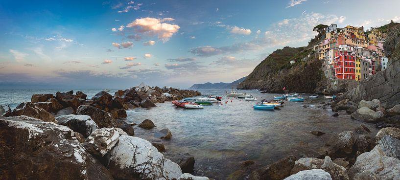 Cinque Terre Panorama van Ronne Vinkx