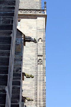 Wasserspeier am Magdeburger Dom (Sachsen-Anhalt) von t.ART
