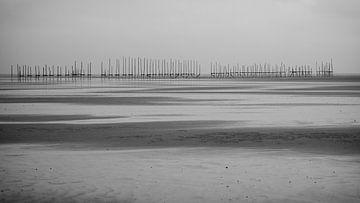 Op de Vliehors staan een rij stokken aan de horizon van Studio de Waay