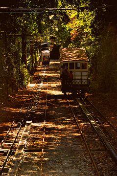 Trains van Sabrina Varao Carreiro