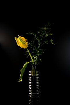 Stilleven Gele papagaai tulp in glazen vaas van Gaby Hendriksz