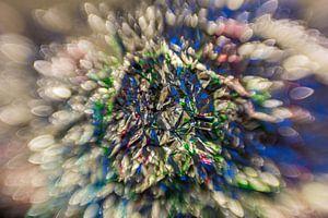 Kleur Explosie #6