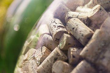 Wijnkurk in het glas van Denis Feiner