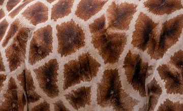 Giraffenprint  van Monica Zimmermans