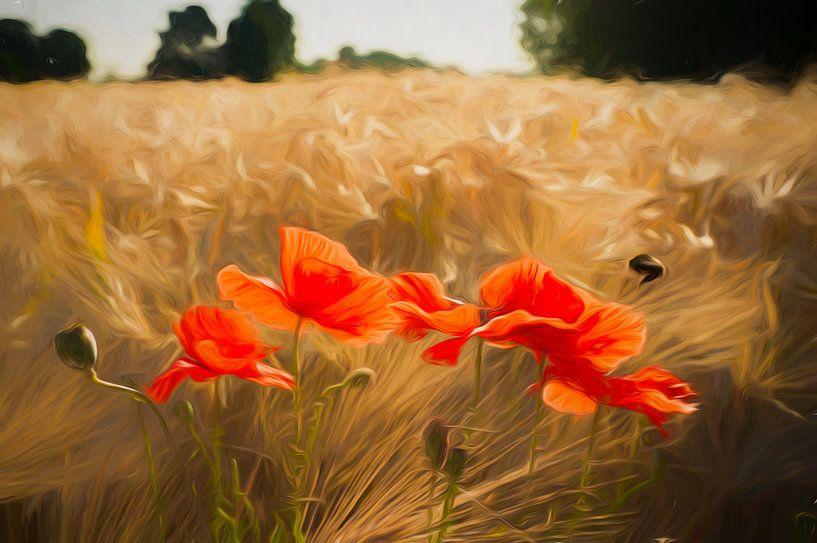 Klaprozen in het veld. van Joris Pannemans - Loris Photography