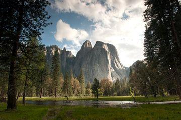 Yosemite park, zicht op El Capitan van Felix Sedney